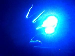 IMG00341-20120327-1847blueLED